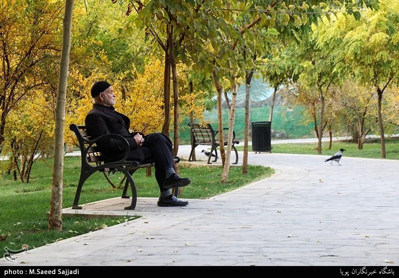 20 پارک محلهای در بافت پرتراکم تبریز احداث میشود