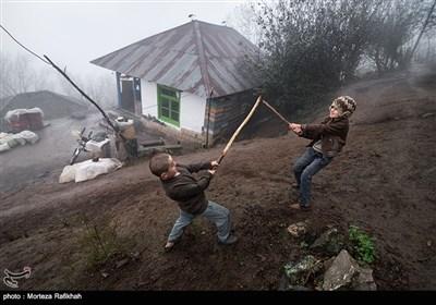 سمت راست امیر 8 ساله و سمت چپ سامان ذکریایی 8 ساله با چوب دستی های خود به اصطلاح (شمشیر بازی) میکنند.چوب دستی بخشی جدانشدنی از زندگی روستاییان مخصوصا کودکان است تا با آن در مقابل حیوانات وحشی از خود دفاع کنند و همچنین وسیله بازی است که خیلی راحت تهیه میشود. پسر بچه ها در روستای شامیلرزان در طول روزبا چوب دستی های خود اکثروقت خود را مشغول این بازی هستند.