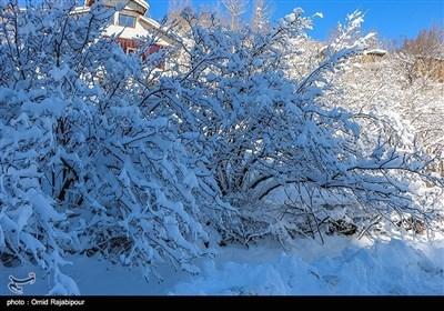 ایران کے صوبہ ہمدان میں موسم خزاں کی پہلی برف باری