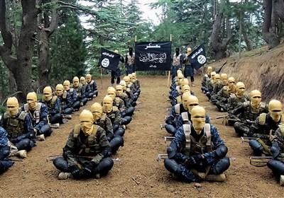 امکان کوچ تروریست های داعشی از سوریه و عراق به افغانستان