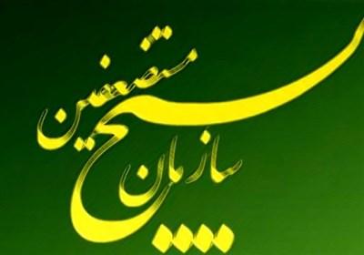 پیام تسلیت سازمان بسیج مستضعفین به مناسبت درگذشت مادر روحانی شهید ردانی پور
