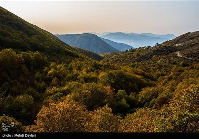 الطبیعة فی فصل الخریف فی غابات أرسباران