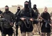 اقدام عجیب زن انگلیسی برای جلوگیری از پیوستن فرزندش به داعش