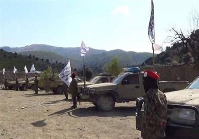 سخنگوی طالبان: از «تاپی» به عنوان یک پروژه مهم اقتصادی در افغانستان حمایت می کنیم