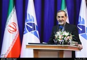 Resistance Front's Victories Led to UN Quds Vote, Iran's Velayati Says