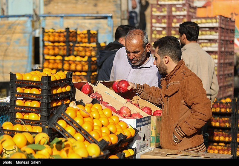 همدان|ذخیره میوه تا اوایل اسفندماه 100 درصد در استان انجام میشود