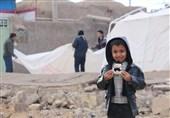 خسارات زلزله استان کرمان تامین اعتبار نشده است