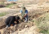کاشت نهال توسط انجمنهای مردم نهاد در پارکملی کرخه
