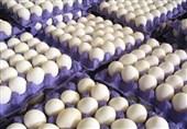 بازار پُر از تخممرغ است ولی قیمت در آستانه شانهای 20 هزار تومان
