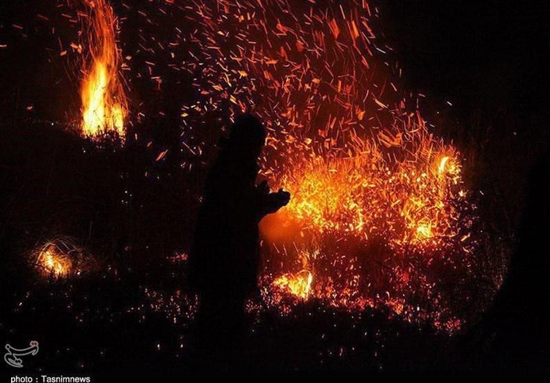 """7 هکتار از نیزارهای """"دریاچه زریبار مریوان"""" آتش گرفت؛ صیادان متخلف فراری شدند"""