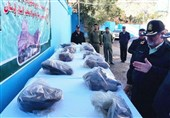 Iranian Police Seize 650kg of Opium in Single Operation