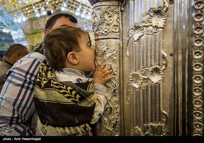 سالروز ولادت امام حسن عسکری(ع) - سامرا
