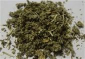 کشف و ضبط 14 کیلوگرم ماده مخدر گل در استان زنجان؛ تریاک همچنان محبوبترین ماده مخدر است