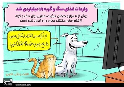 کاریکاتور/ آفت زندگی لاکچری بر اقتصادمقاومتی!