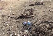İşgalci Suud Yemen'de Düğün Alanını Vurdu