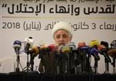 شیخ نعیم قاسم: استکبار از 70 سال پیش در جهت تثبیت اشغالگری و حذف فلسطین گام برداشته است