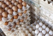 2000 تن تخم مرغ برای تنظیم بازار ثبت سفارش شد