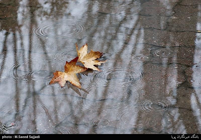 گفتوگوی خواندنی با یک جغرافیدان درباره علل کاهش بارش در کشور