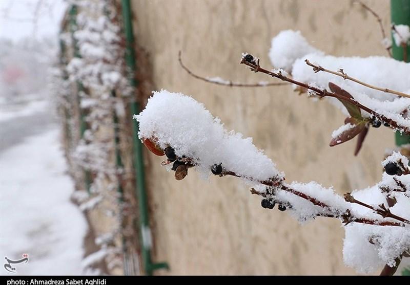 ایران کے 11 صوبوں میں شدید برفباری