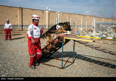 Iran's Search and Rescue Training Center