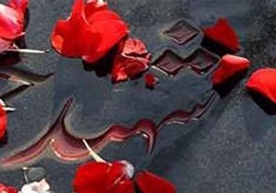 تمثال 4 شهید مدافع حرم در سمنان رونمایی میشود