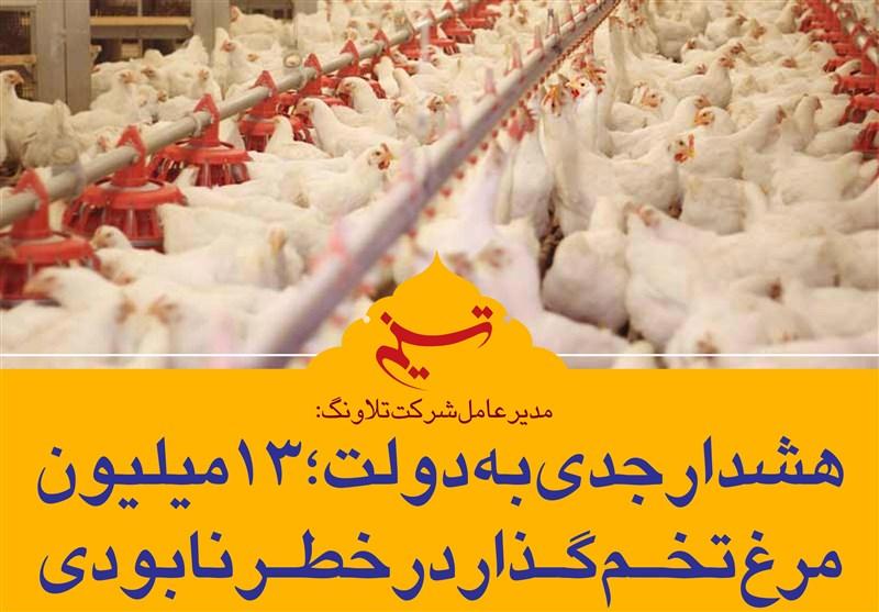 فتوتیتر/ هشدار جدی به دولت؛ 13 میلیون مرغ تخمگذار در خطر نابودی