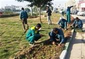 حل بسیاری از مشکلات فضای سبز کرج با اجرای پروژههای عمرانی امکانپذیر است