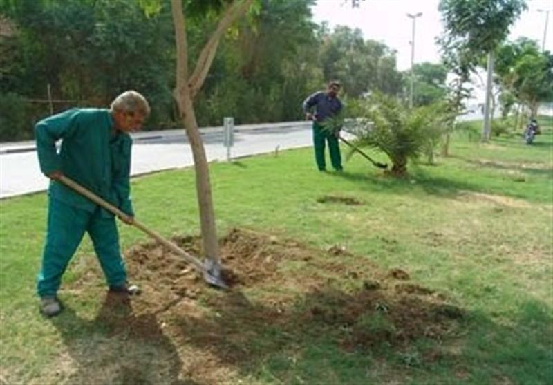 بحران کم آبی مانع توسعه فضای سبز تبریز شده است