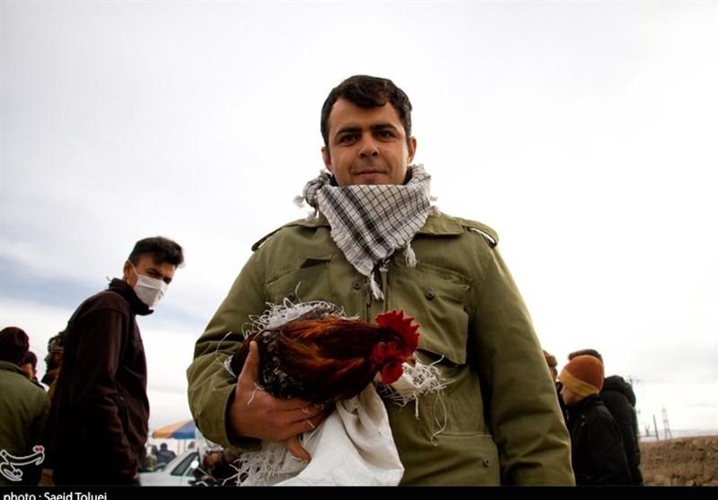 """جمعه بازار خرید و فروش """"پرندگان"""" در بجنورد به روایت تصویر"""