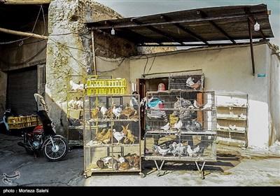 بازار محله جویباره