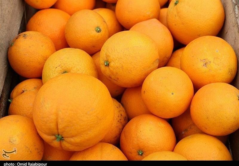 جزئیات ذخیرهسازی و توزیع 70 هزار تن سیب و پرتقال شب عید