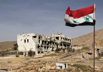 سناتور روس: آمریکا درصدد بی ثباتی و تقسیم سوریه است