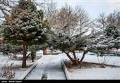 بارش اولین برف زمستانی در اهر - آذربایجان شرقی