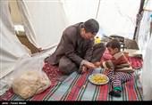 بازدید رئیس کمیته امداد امام خمینی (ره) از مناطق زلزله زده کرمانشاه