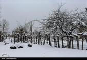 بارش برف در ارتفاعات رودسر گیلان