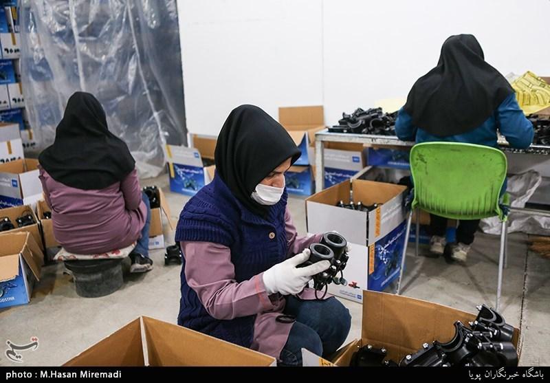 کرمان| زنان کرمان رتبه نخست مشارکت اقتصادی و اجتماعی کشور را دارند