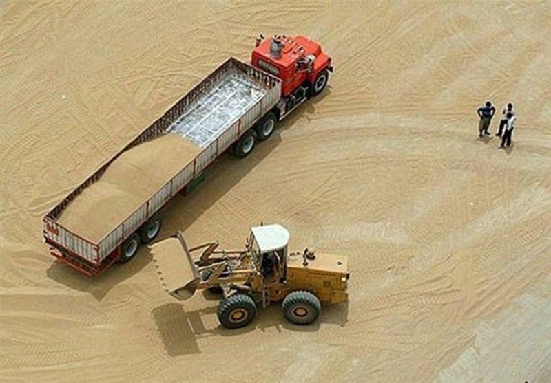 ورود سازمان بازرسی به واردات گندم/ مجوز ورود 700 هزار تن گندم باطل شد