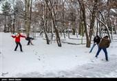 ایران کے صوبہ مشرقی آذربائیجان میں برف کے مناظر