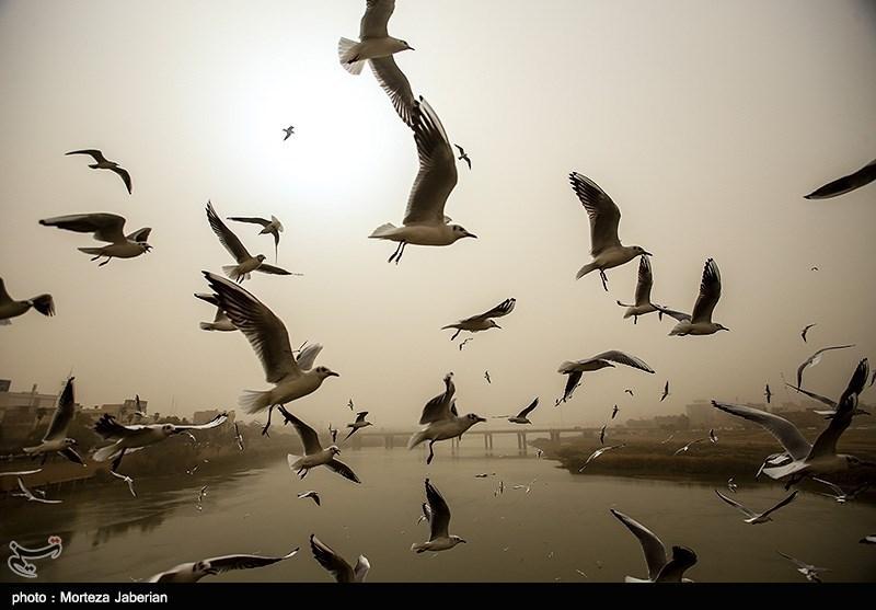 تداوم گرد و خاک در آسمان خوزستان