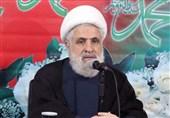 الشیخ قاسم: أداء المقاومة الإسلامیة فی لبنان نموذجی ولا مثیل له