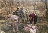 8 شکارچی غیرمجاز دستگیر شدند