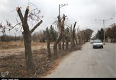 توسعه خیابانی در بجنورد با