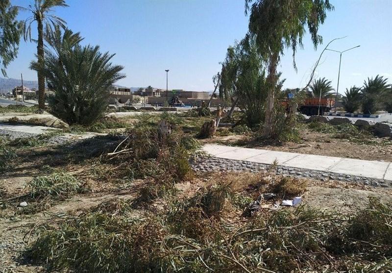 قطع درختان میدان غدیر سراوان
