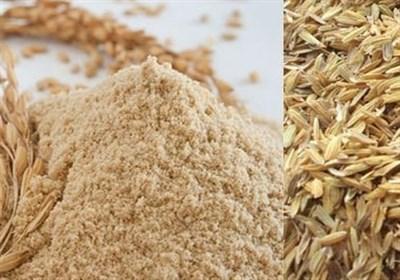 مخالفت سازمان برنامه بودجه با درخواست وزیر کشاورزی برای عدم تغییر نرخ سبوس