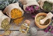 استانداردسازی فرآوردههای گیاهی زمینه توسعه طب ایرانی را فراهم میکند