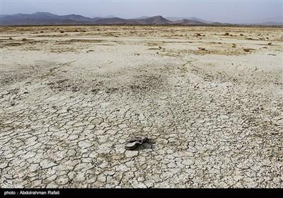 مرگ تدریجی تالاب آق گل - همدان