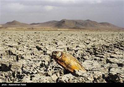 مرگ تالاب آق گل - همدان
