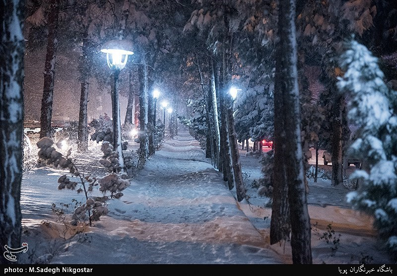 Tehran Airports, Schools Closed Due To Snow