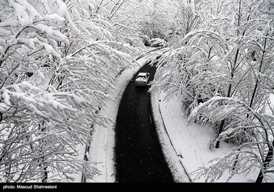 Tehran Embraces First Winter Snow