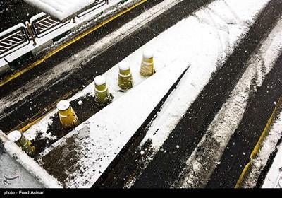تهران سفید
